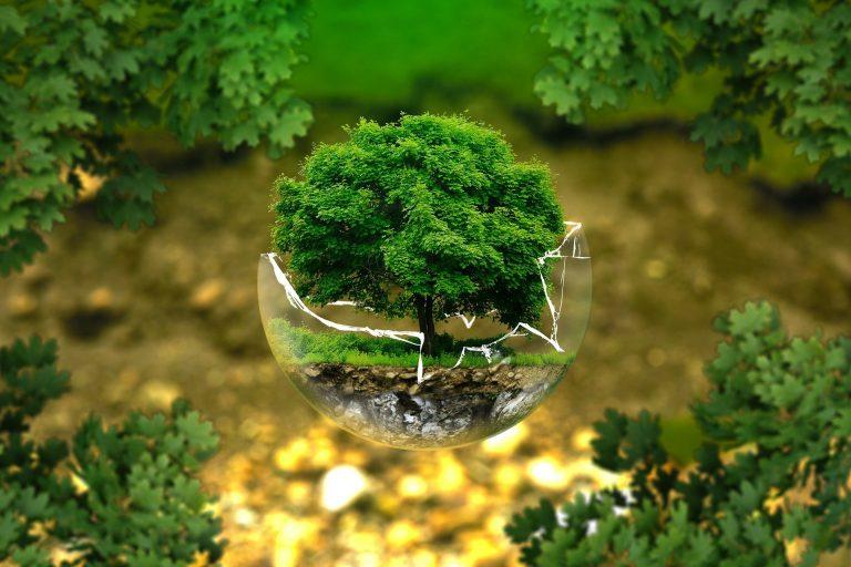 Earth Overshoot day - renewable energy